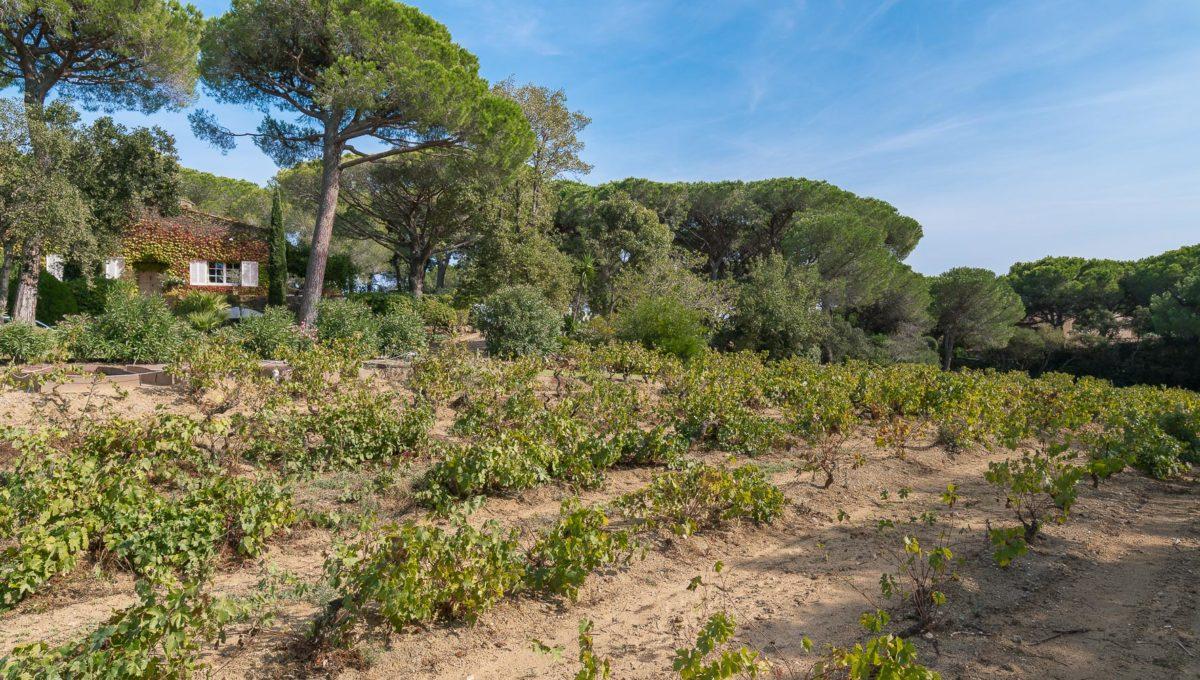 Villa Le Pignon Lyne Immo BD-27